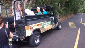 Tijuca Forest Jeep Tour - Rio de Janeiro, Brazil