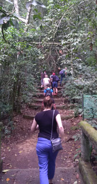 Tijuca Forest Trail to Waterfall