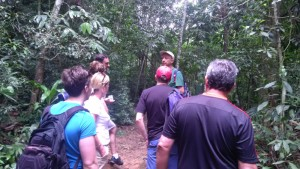 Tijuca National Park Tour