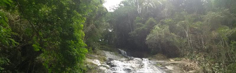Tijuca National Park Rio de Janeiro Brazil